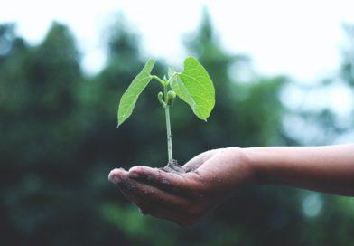 Webinář Ministerstva financí a Ministerstva životního prostředí k návrhu kritérií taxonomie pro cíle ochrany klimatu